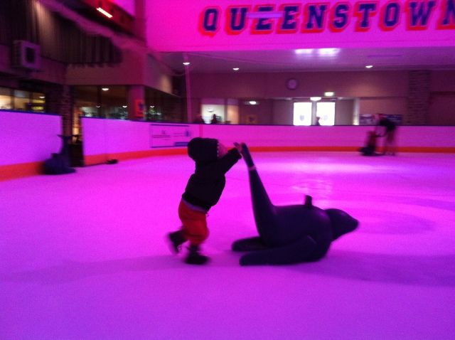 Queenstown ice rink
